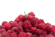 Free Fresh Raspberry Royalty Free Stock Images - 20384209