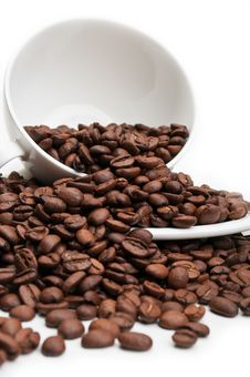 Free Full Cup With Coffee Beans Stock Images - 20384624