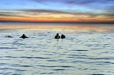 Free Scuba Divers At Sunrise Royalty Free Stock Photo - 20384915