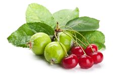 Free Fresh Cherry And Apples Royalty Free Stock Photo - 20384955