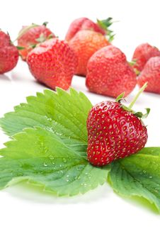 Free Fresh Strawberry And Green Leaf Stock Images - 20385154
