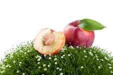 Free Fresh Peach On A Green Grass Royalty Free Stock Image - 20385166