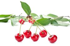 Free Red Fresh Cherry And Leaf Stock Image - 20385531