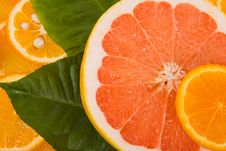 Free Mixed Citrus Fruit Stock Photography - 20386492