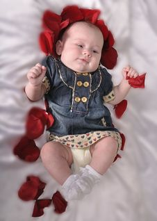 Free Baby With An Entourage Of Red Petals Rose Royalty Free Stock Photos - 20387038