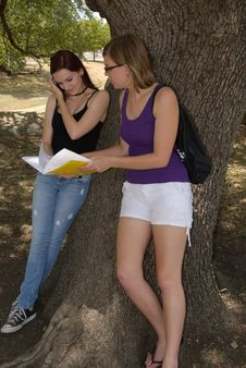 Free Two Girls Lean Against A Tree With Notebook Stock Photography - 20388352