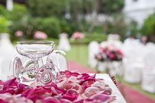 Free Champagne Glass And Rose Petals Royalty Free Stock Photo - 20389055
