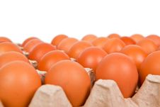 Free Eggs In The Box Stock Image - 20389211