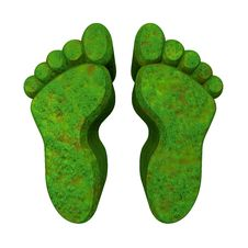 Free 3d Made - Foot Prints In Green Grass Stock Photo - 20396010