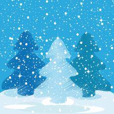 Free Winter Background Stock Photo - 20399920