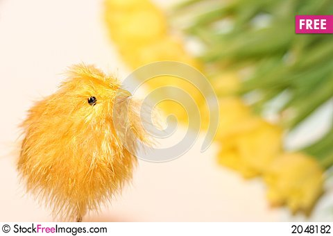 Easter chicken baby toy Stock Photo