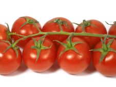 Free Cherry Tomatoes Stock Photography - 2043412