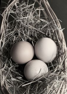 Free Three Eggs Stock Photos - 2046733