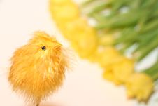 Free Easter Chicken Baby Toy Stock Photography - 2048182