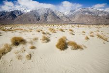 Sand Dune Near Death Valley Stock Images