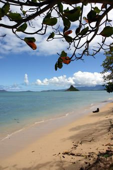Free Paradise Beach Framed By A Tree Royalty Free Stock Photos - 2049238