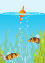 Free Fish And Float Stock Images - 20406104