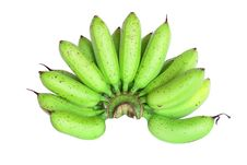Free Green Banana Stock Images - 20402084