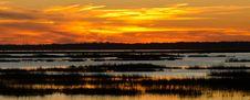 Free Sunset Royalty Free Stock Photo - 20402115