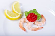 Free Shrimp Royalty Free Stock Images - 20403839