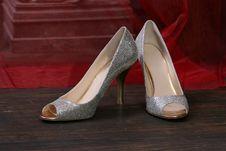 Free Wedding Shoes Royalty Free Stock Photo - 20404295