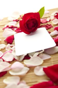 Free Card And Roses Royalty Free Stock Image - 20406866