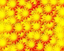 Free Field Of Flowers Stock Images - 20409424
