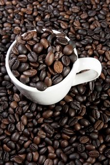 Free Cup Of Coffee Royalty Free Stock Images - 20409719