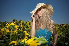 Free Blond Girl In Sunflowers Royalty Free Stock Photography - 20409917
