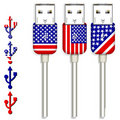 Free America Usb Royalty Free Stock Image - 20415586