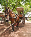 Free Horse And Carriage . Royalty Free Stock Image - 20416276