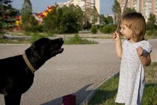 Little Girl With Dog Outside