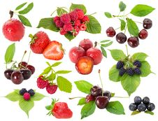 Free Collection Of Berries Stock Image - 20413381