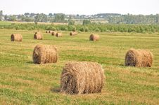 Free Rolls Of Hay In A Field. Stock Photography - 20413402