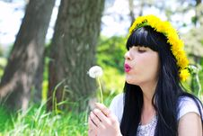 Young Woman With Dandelion Royalty Free Stock Photography