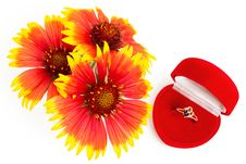 Free Ring And Flowers Royalty Free Stock Photography - 20414617