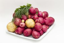Free Potatoes Stock Photography - 20415662