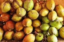 Free Coconuts Fruit Shop Royalty Free Stock Images - 20416059