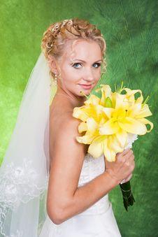 Free Beautiful Bride Royalty Free Stock Photos - 20416298