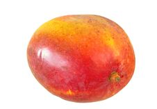 Free Mango Royalty Free Stock Photo - 20416345