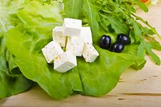 Free Goat S Cheese Royalty Free Stock Photo - 20418515