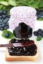 Free Blueberry Jam Stock Image - 20425301