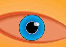 Free Vector Illustration Of The Eye Royalty Free Stock Photos - 20420078