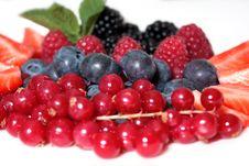 Free Berries Stock Image - 20420411