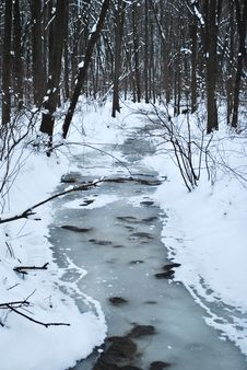 Free Snowy Creek Royalty Free Stock Images - 20420639