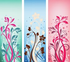 Free Collection Of  Ornate Color Banners Royalty Free Stock Photography - 20421987