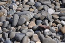 Free Stony Beach Royalty Free Stock Images - 20423159