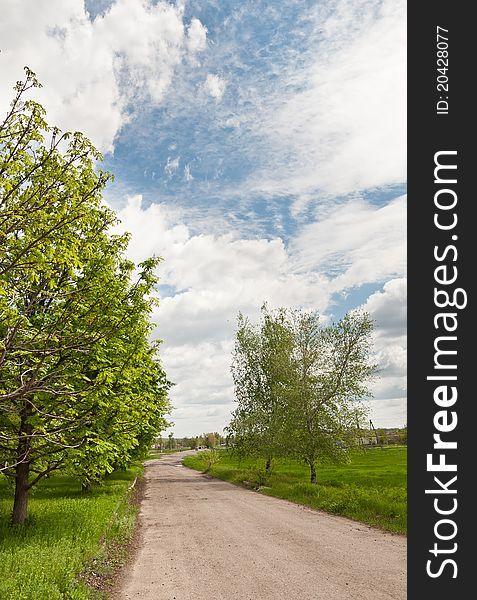 Road in a Ukrainian Village