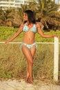 Free Bikini Model On The Beach Stock Photo - 20438430