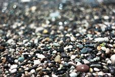 Free Colored Sea Stones Royalty Free Stock Images - 20430369